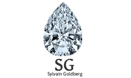 Sylvain Goldberg Retina Logo