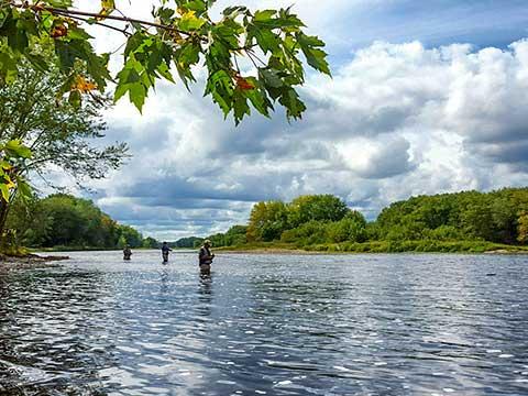 Renous op rivier