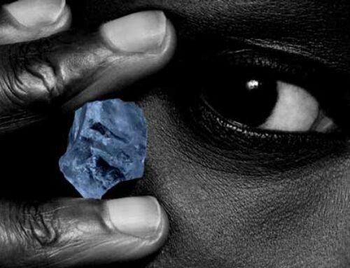 Recordverkoop grote stenen krikt resultaten Petra op